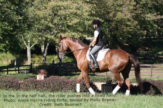 "Beth Baumert: ""The Joy of a Balanced Horse"""