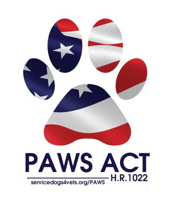 The New PAWS Act [What You Need to Know]