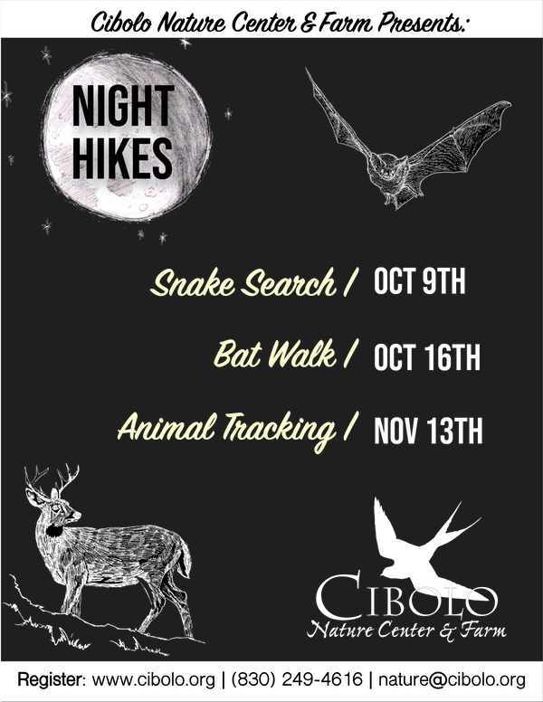 CNC: Night Hike and Bat Walk