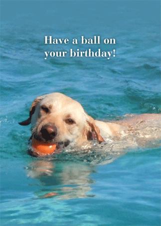 Birthday: A-3