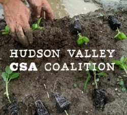 Hudson Valley CSA Coalition