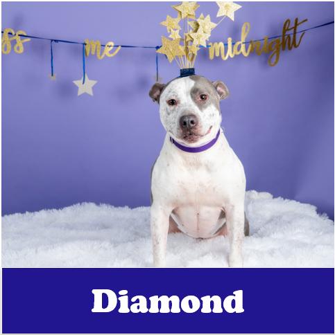 Diamond-OG