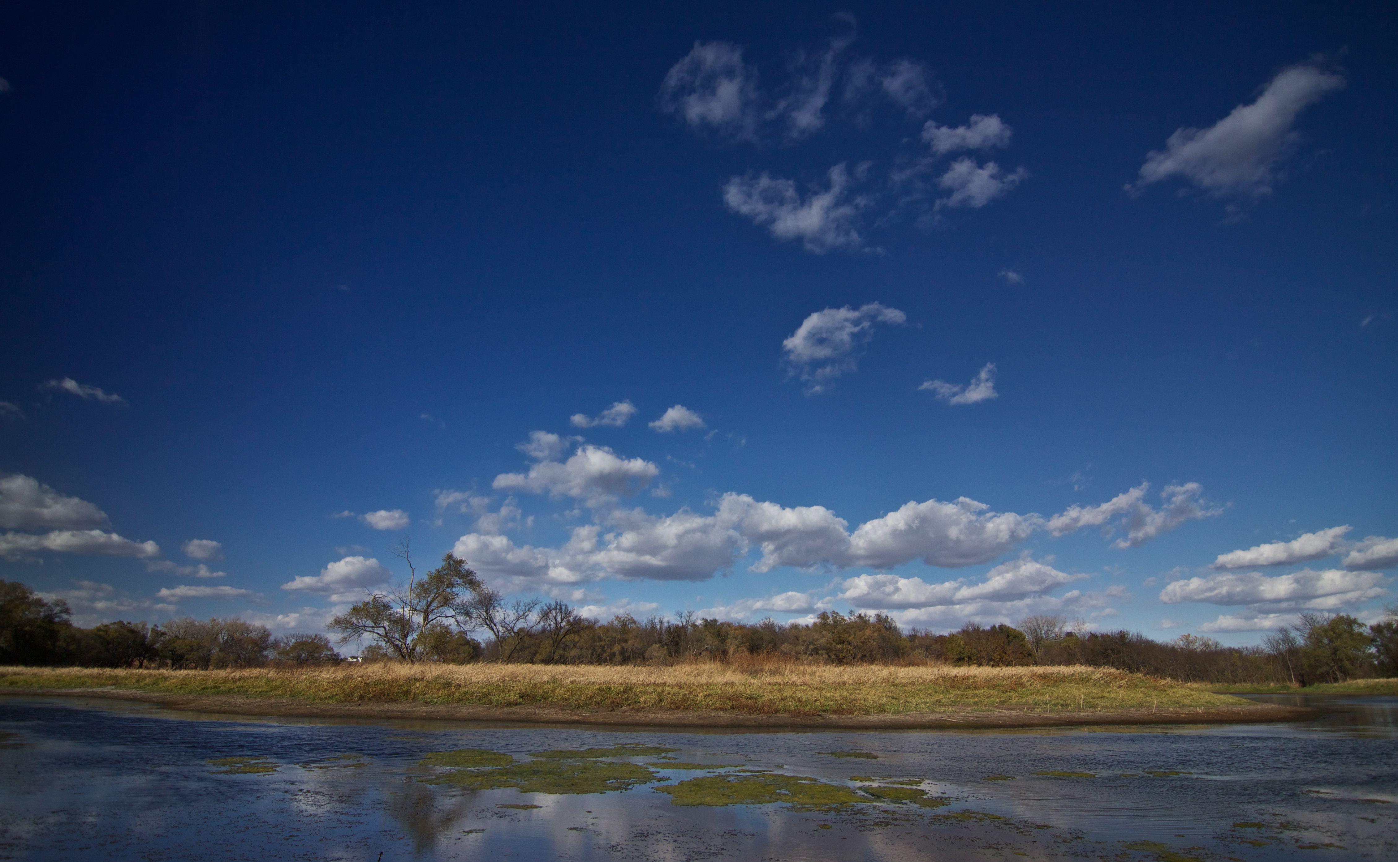 Heron Wetland photo by Adrian Olivera
