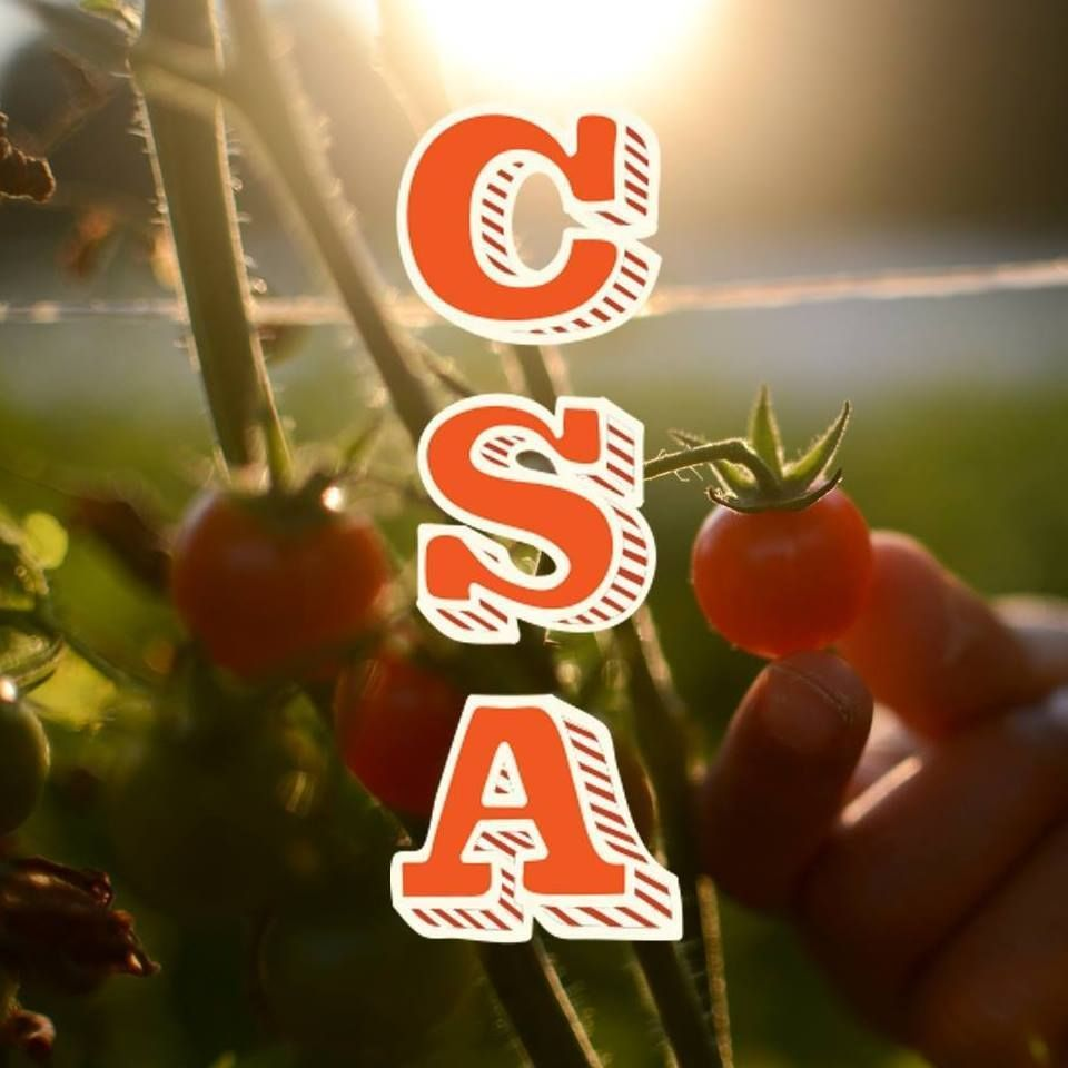 CSA Summit - Feb 18th