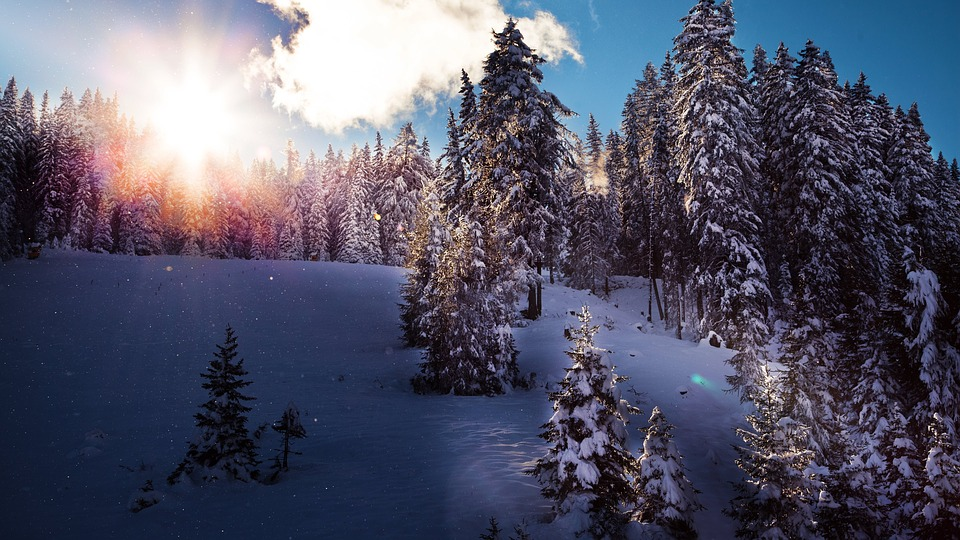 Advent Retreat rescheduled for Sunday, December 8