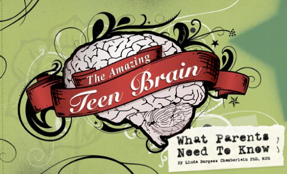 The Amazing Teen Brain: What Parents Need to Know