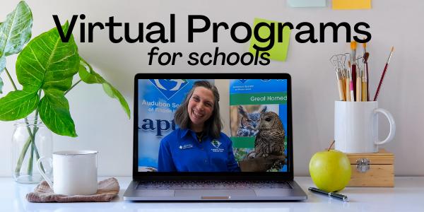 Virtual Programs for Schools