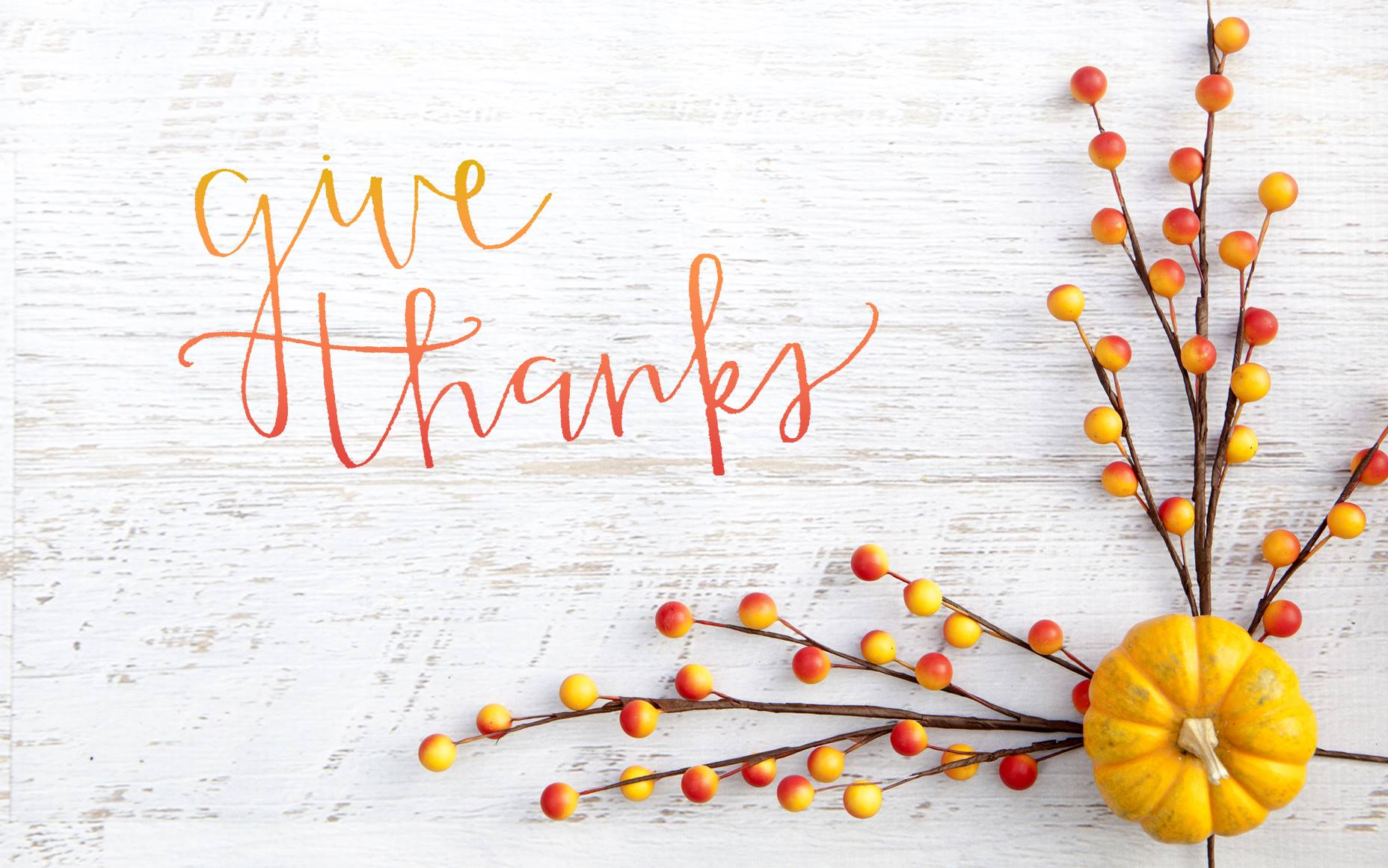 We will be closed November 28th - 29th in observance of the Thanksgiving Holiday.