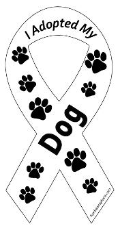 I adopted my dog (ribbon style)