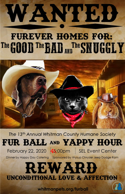 13th Annual Fur Ball and Yappy Hour