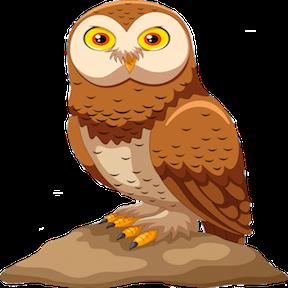 Owl Supporter