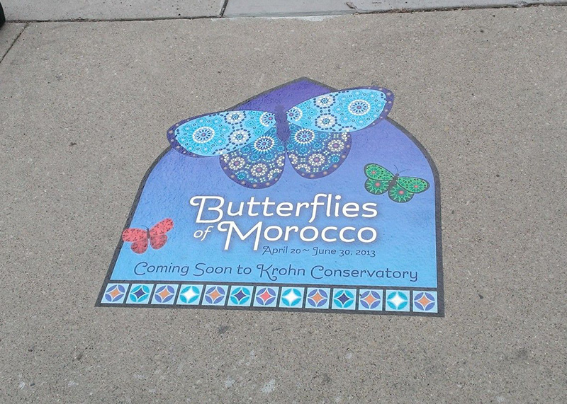 Butterflies of Morocco