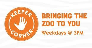 Lincoln Children's Zoo: Keeper Corner
