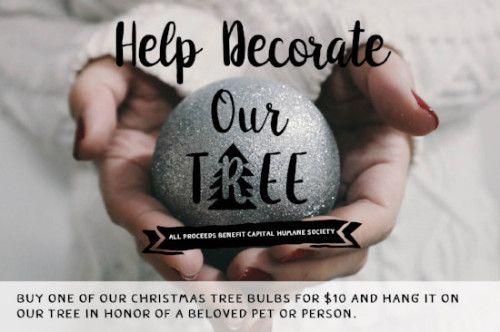 Holiday Bulbs Available Now