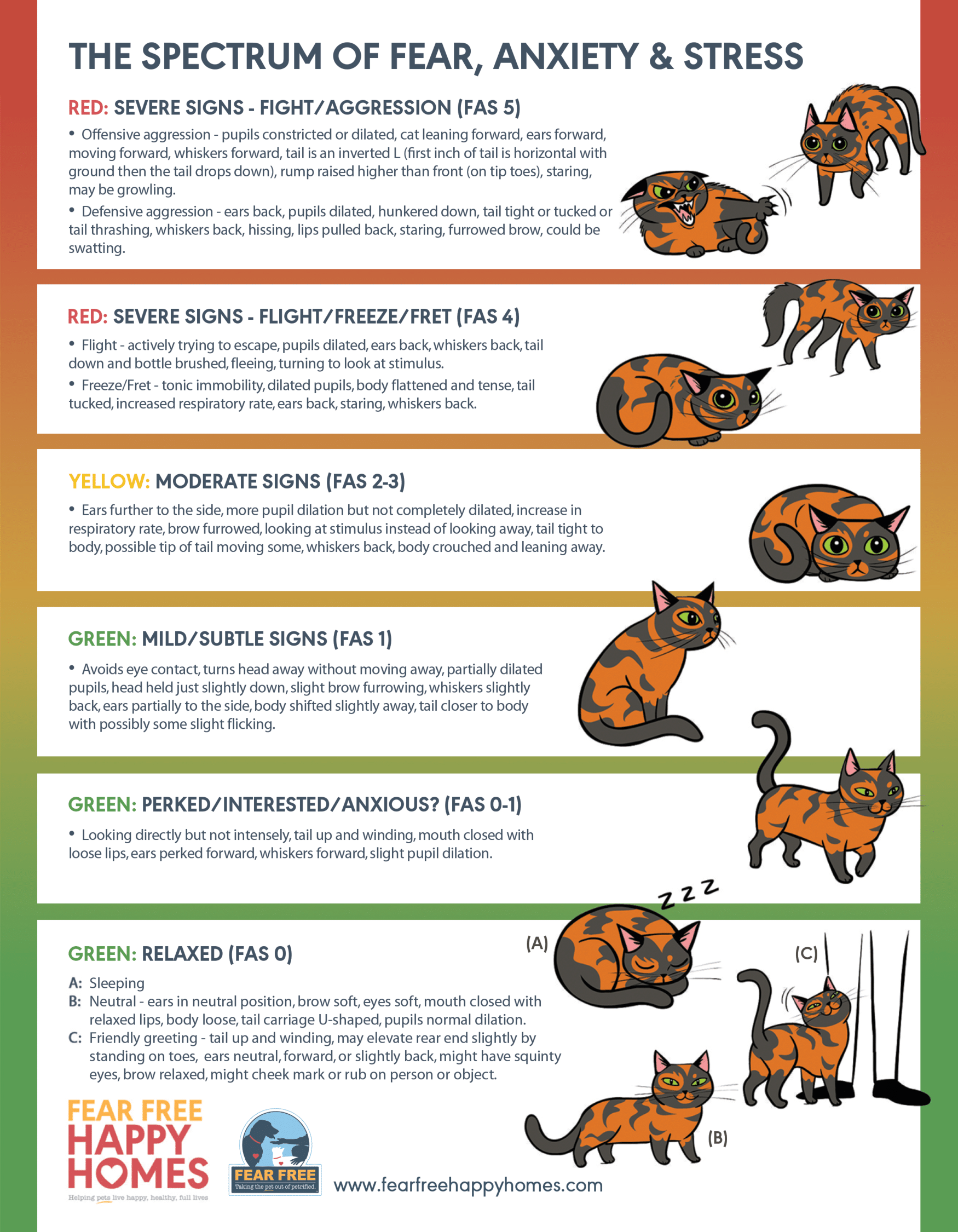 A Cat's Spectrum of Fear, Anxiety, & Stress