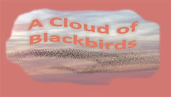 Register for January 7 class: A Cloud of Blackbirds