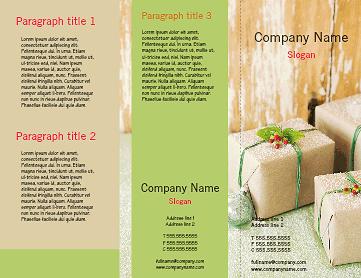 Tri Fold (3 Panel) Brochures