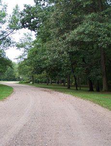 Charlton Park Forest