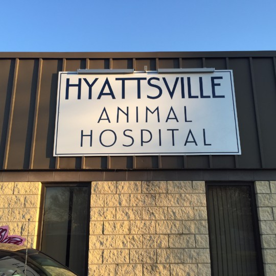 Hyattsville Animal Hospital