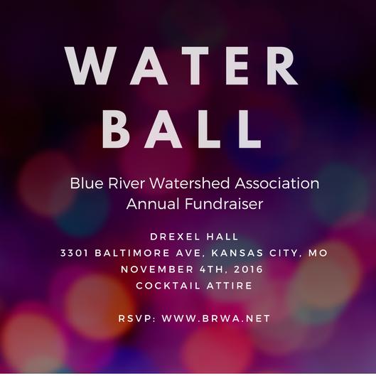 Water Ball 2016