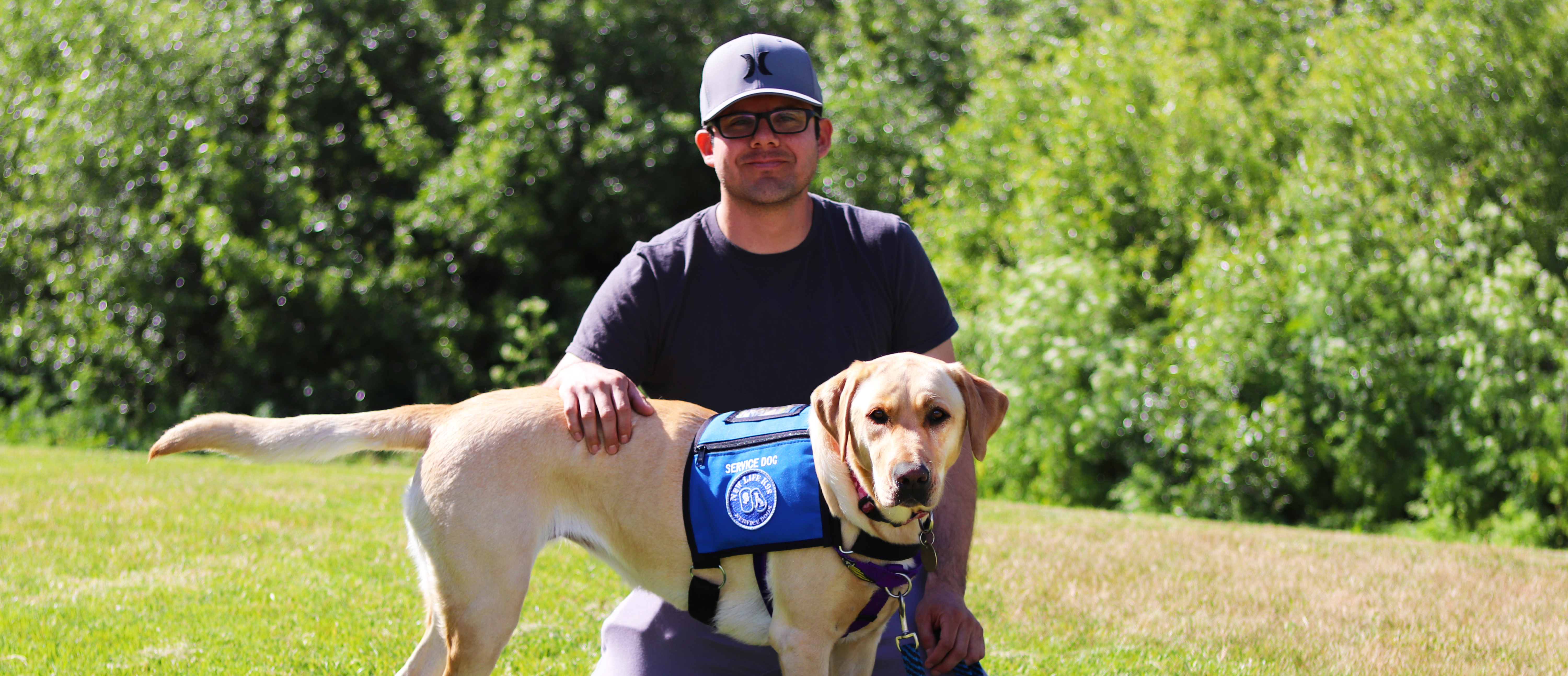 Apply for a Service Dog