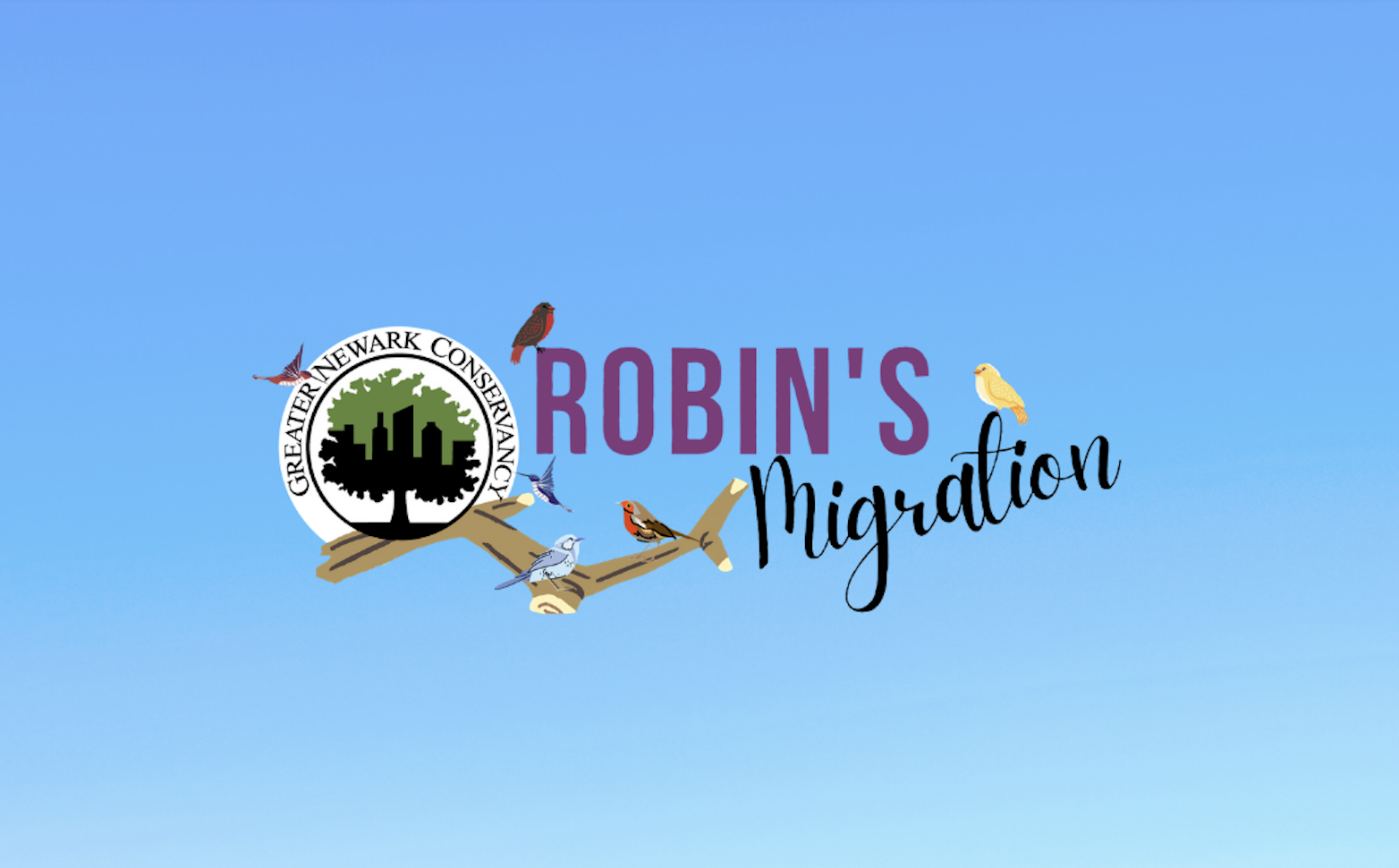 Robin's Migration