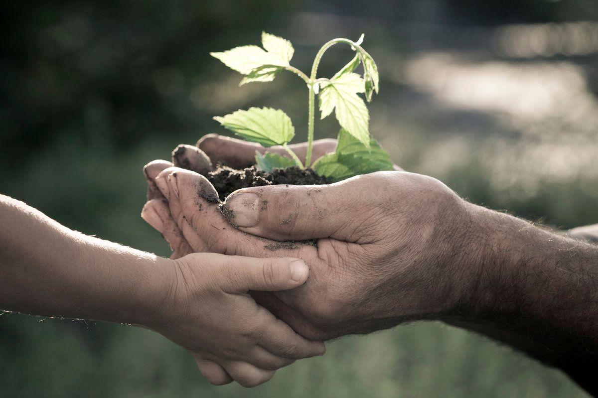 Philanthropy and Impact