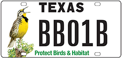 Conservation License Plate