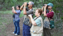 Birding Beyond the Basics Workshop at CNC