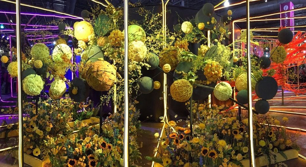 Join us March 3 for a trip to the Philadelphia Flower Show