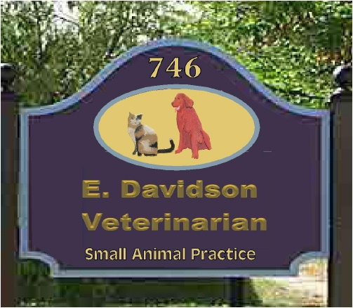 BB11765 – Carved HDU Entrance Sign to Veterinary Office and Clinic with Irish Setter and Calico Cat