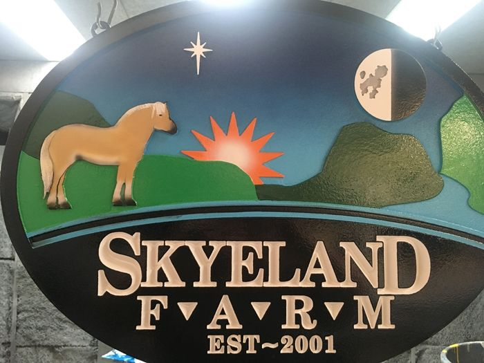 P25328 - Colorful, Carved High Density Urethane Farm Sign With Pony, Son, Moon, Earth, Star