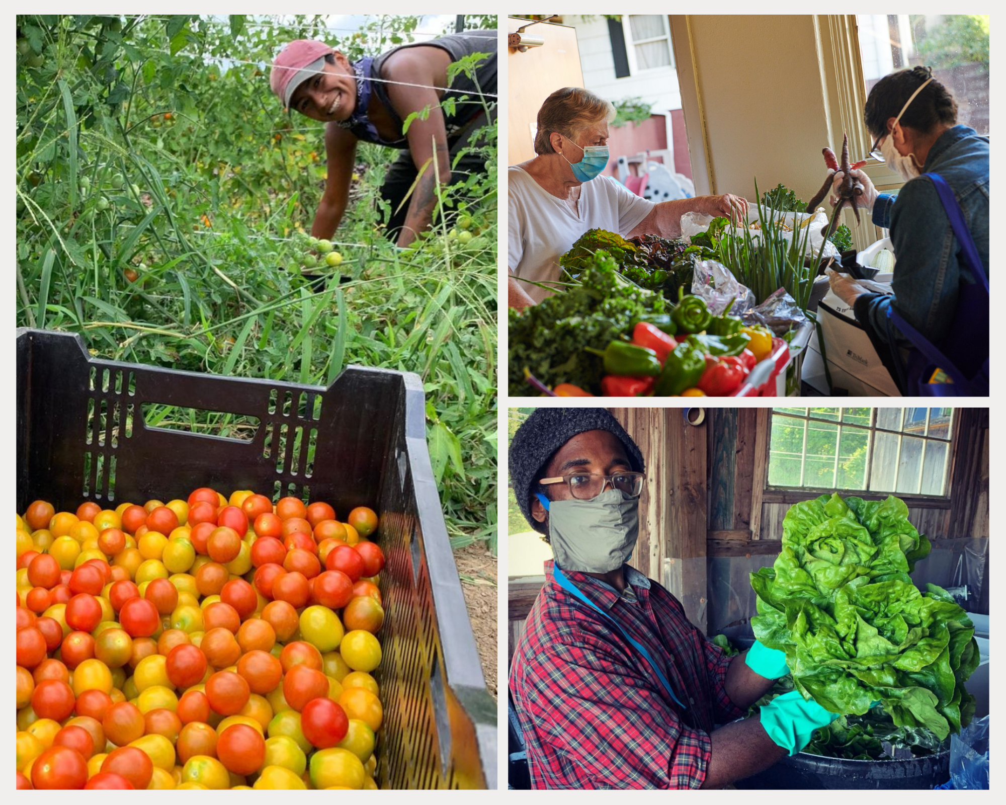 A Closer Look at the Food Sovereignty Fund