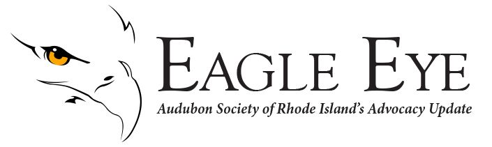 Audubon Society of Rhode Island Eagle Eye Advocacy Update Environmental News Call to Action Smith Hill