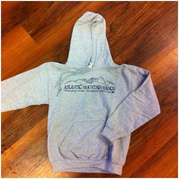 AMR Grey Hoodie