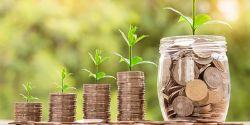 NSFA Webinar: Capital Campaign Basics - Get Ready for Your Future