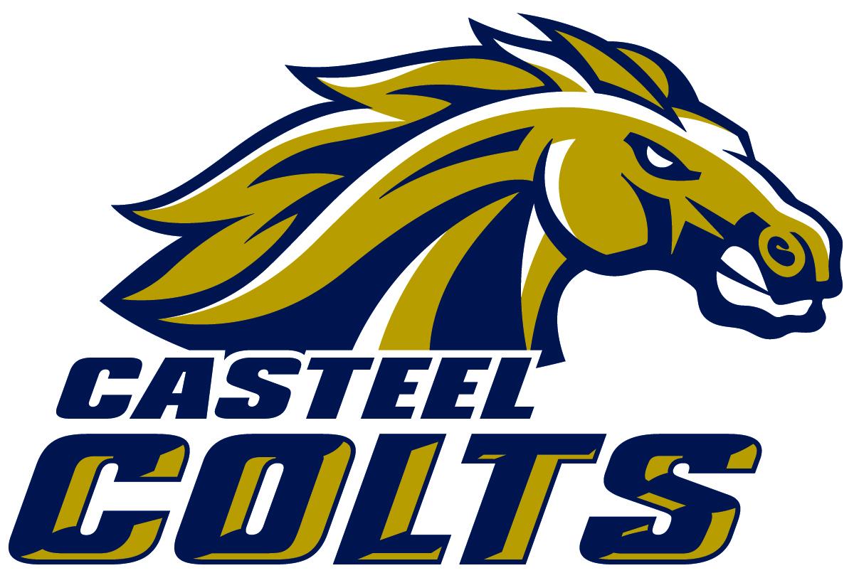 Camille Casteel High School