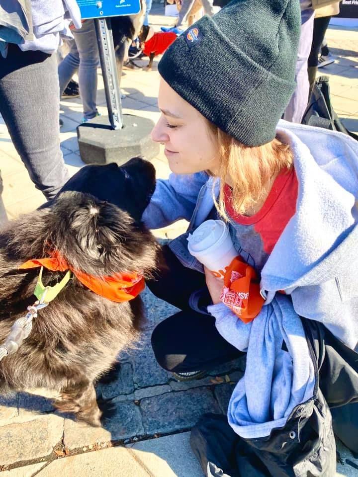 Dog Kennel Volunteer