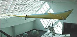 Merlin Hang Glider