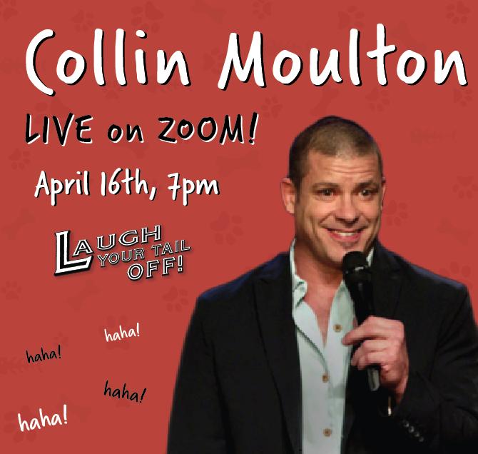 Collin Moulton, LIVE on ZOOM