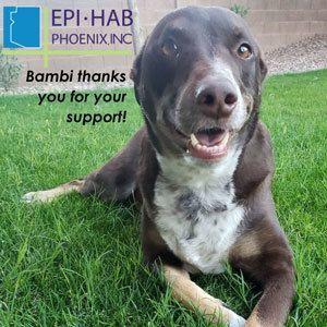 Thank you Epi-Hab!