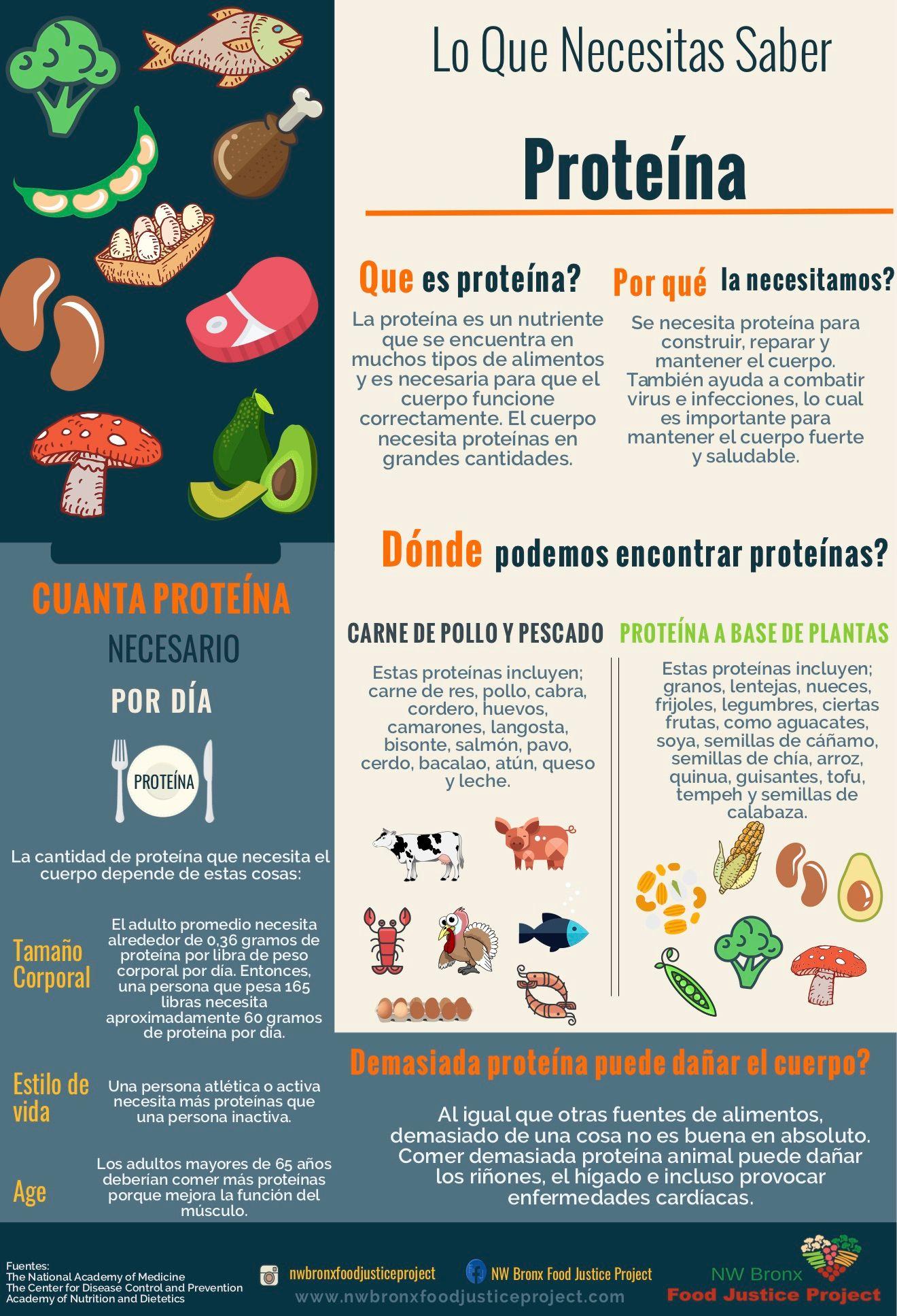 Covid-19 y la importancia de la proteína