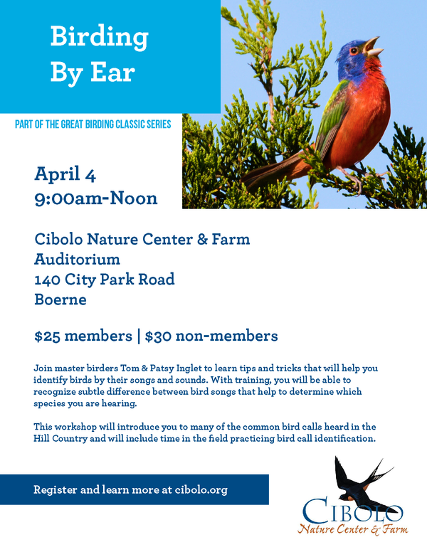 Postponed:  Birding by Ear Workshop