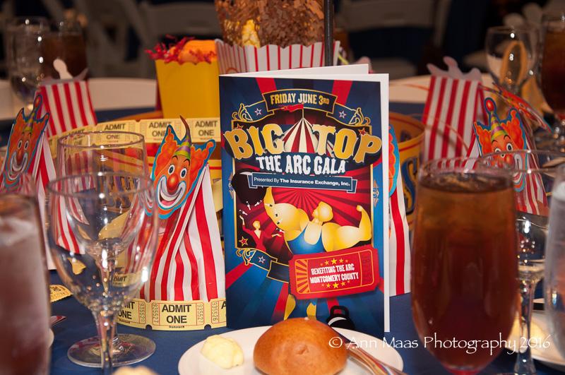 2016 Under the Big Top Gala