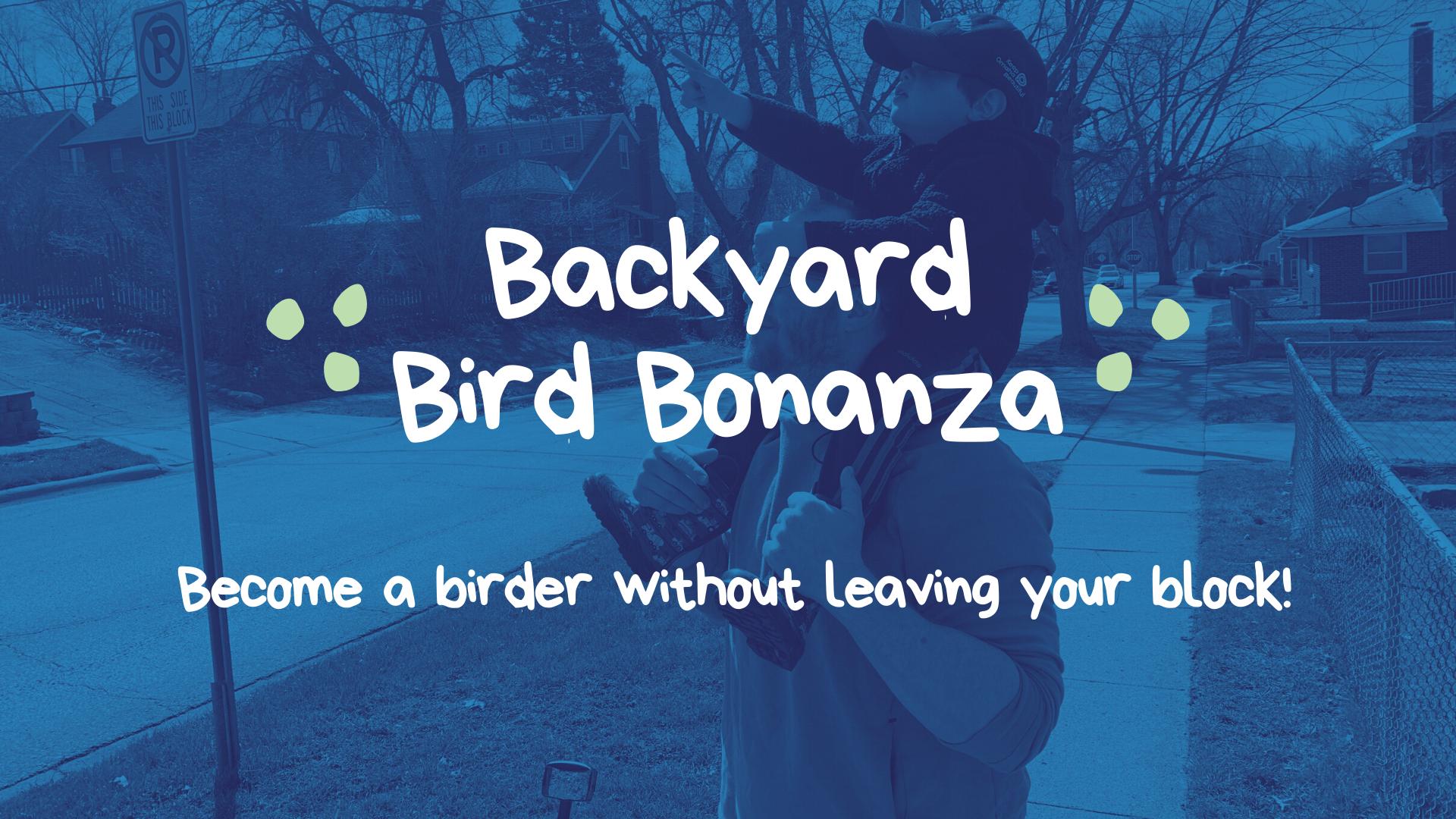 Backyard Bird Bonanza