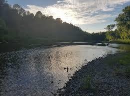 Cyndi Schill Memorial River Run
