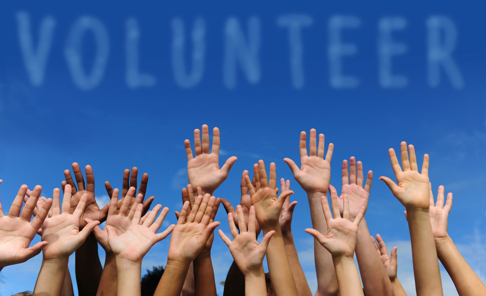 Make a difference with your free time... volunteer!