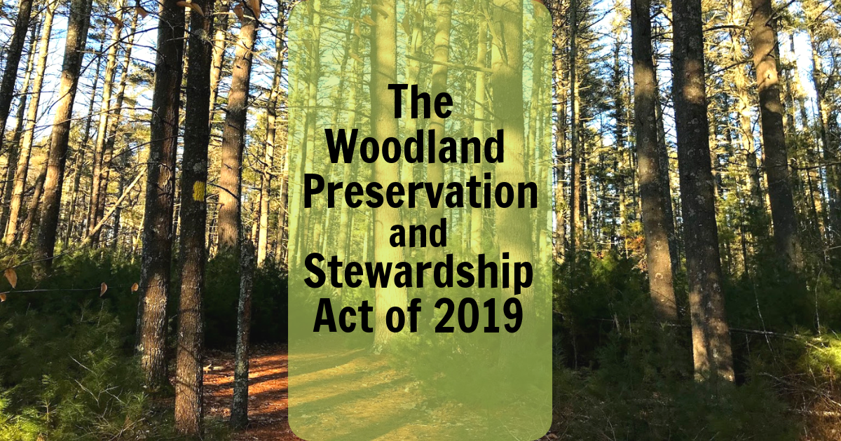 Woodland Stewardship Preservation Act of 2019 Forest Conservation Audubon Society of Rhode Island Advocacy