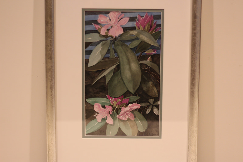 """The Indomitable Rhodie"" - Donated by the artist, Mary Ann Bucci"