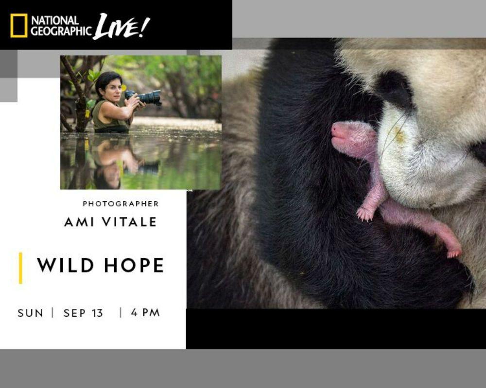 Ami Vitale: Wild Hope